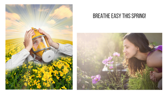 Your 3-step natural approach to give hay fever the flick