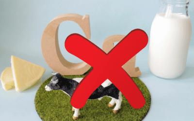 Best non-dairy sources of calcium