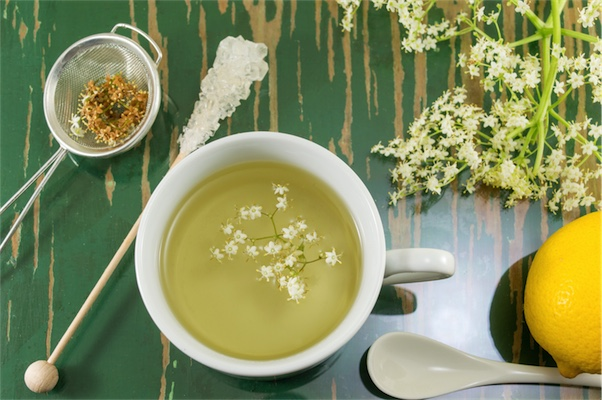 natural treatments for fever elderflower tea