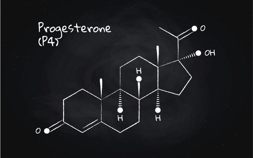 The role of progesterone in acne