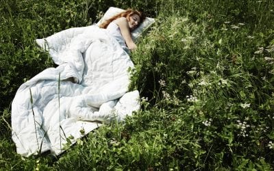 The 5 Best Herbs for Sleep